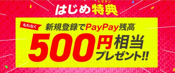 paypay500-600x253